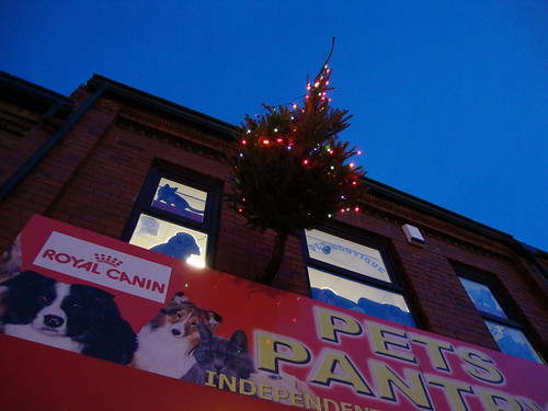 Stockton Heath Christmas flag