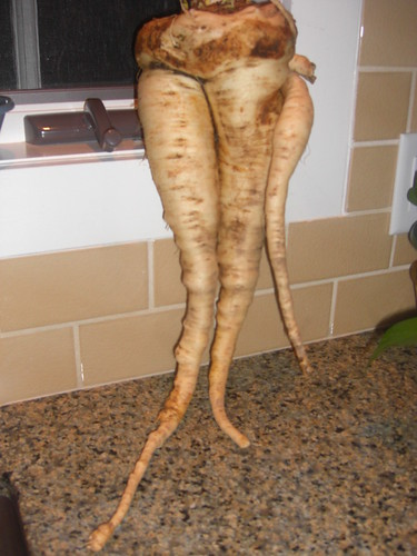 Out of Control Parsnips