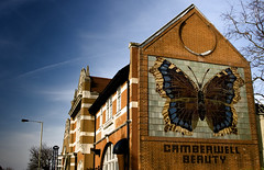 Camberwell Beauty - Southampton Way SE5