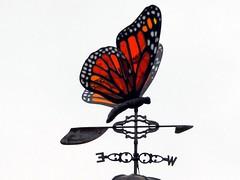 tomorrow never knows (frankieleon) Tags: weather butterfly interestingness interesting bestof wind cc direction creativecommons weathervane popular frankieleon