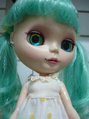 Diário de uma boneca