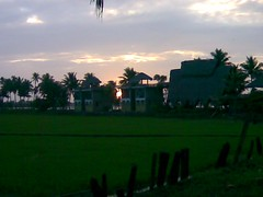 Alleppey backwater (alleppey hotels) Tags: stay cruises backwater alleppey