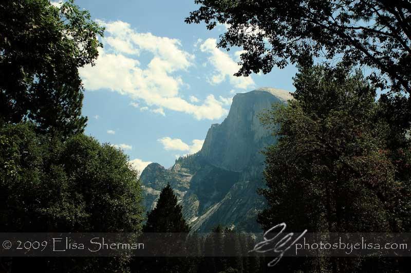 Yosemite by Elisa Sherman