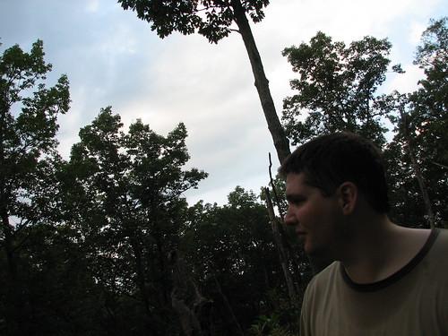 loglolly trail