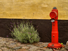 Colours of The Street (Kirsten M Lentoft) Tags: street blue red yellow wall hydrant denmark dragør lavender abigfave waterhost anawesomeshot colorphotoaward visiongroup flickrdiamond kirstenmlentoft