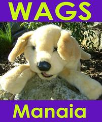 wags manaia