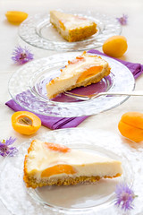 apricot-&-creamcheese-torte_7 (a_krol) Tags: food yellow baking sweet violet apricot tart foodphoto foodstyling