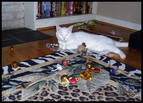 zima with toys