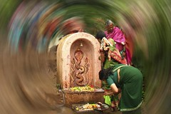 Worshipping The Snake Diety (Tilak Haria) Tags: india worshipping women worship colorful cobra snake maharashtra sangli nagpanchami colorphotoaward pratibimbsangli snakediety