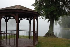 Good morning at Pecks Pond