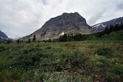 Mountain (thefuton) Tags: travel mountain nature montana day cloudy roadtrip glaciernationalpark