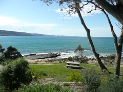 Great Ocean Road (stonethecrow) Tags: australia victoria greatoceanroad lorne