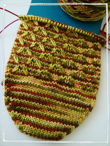 autumn starflower socks