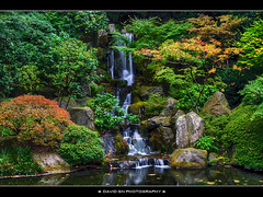 The Waterfall at Portland Japanese Garden (David Gn Photography) Tags: oregon garden portland landscape waterfall pond zen pdx portlandjapanesegarden hdr washingtonpark arlingtonheights photomatix canonefs1855mmf3556 canoneosrebelt1i