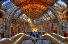 View into the natural history museum at London (klaash63) Tags: building museum architecture photographer sony alpha 700 naturalhistorymuseum depth hdr hdri gebouw irfanview fotograaf diepte heiligenberg photomatix a700 tonemapping tonemap saariysqualitypictures absolutegoldenmasterpiece klaasheiligenb