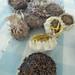 sunflower seed harvesting