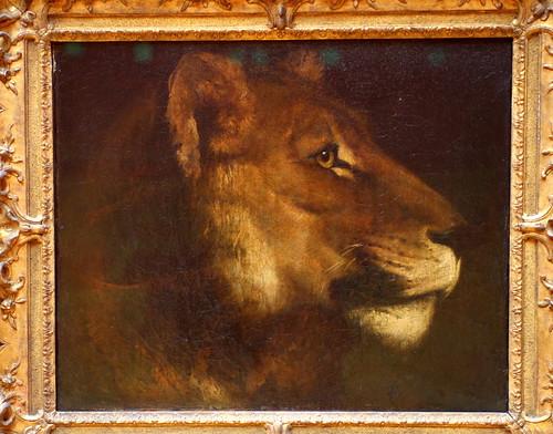 Théodore GÉRICAULT, Tête de lionne
