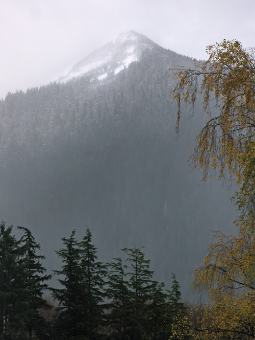 new snow on Deer Mountain, Ketchikan, Alaska