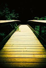 Future tense (kevin dooley) Tags: wood bridge summer film mi analog forest happy lomo xpro lomography crossprocessed woods fuji slim footbridge path michigan wide velvia journey enjoy future western unknown fujifilm warren 100 now viv vivitar ultra 2009 tense keeponmoving uws oldfashioned warrenwoods barrien vuws vivalaviv