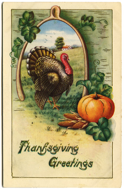 Thanksgiving postcard_turkey_tatteredandlost