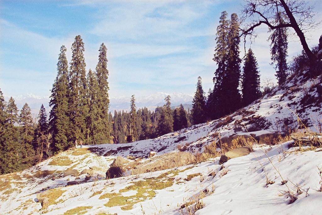 In the Lap of the Apple Heartland – Narkanda (HP)