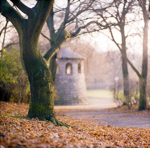 Schillerpark, Berlin
