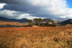 An overcast sky in Connemara (Frank Fullard) Tags: ireland galway landscape connemara fullard frankfullard