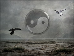 Yin + Yang (by h.koppdelaney)