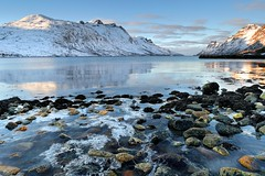 Frozen Sea (Tony Armstrong-Sly) Tags: norway tromso ersfjordbotn scandinavia winter snow ice seaice fiord fjord mountains landscape seascape coast nature