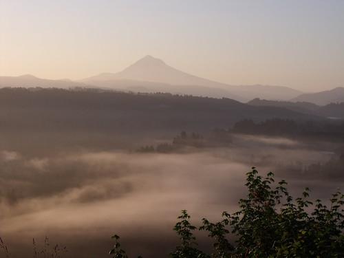 Morning mist and Mt. Hood