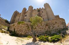 Obidos Castle-Pousada (BongoInc) Tags: castle portugal monument rocks fort wideangle fisheye cobblestone moorish moors obidos pousada distort d90 madeinportugal ilustrarportugal