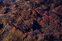 Nahant_Geology_3 (steve_preston) Tags: rocks massachusetts eastpoint nahant