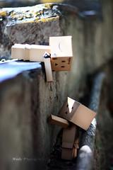 !! (sndy) Tags: sanfrancisco canon toy toys box figure figurine sindy kaiyodo yotsuba danbo revoltech danboard   amazoncomjp