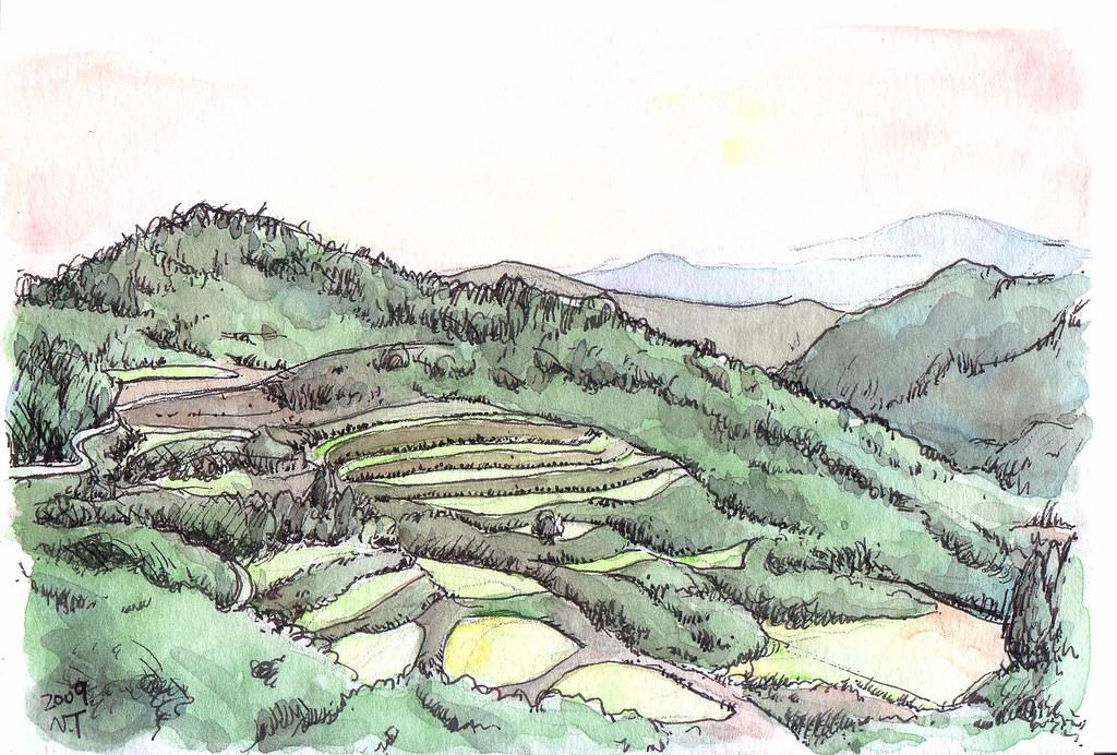 越後妻有地方の棚田 Terraced paddy fields