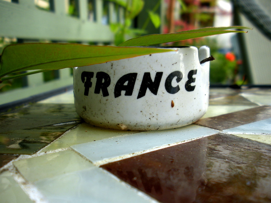 France on the table by voodooangel, on Flickr