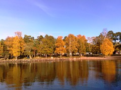 Fall at Lake Vänern in Sweden #4