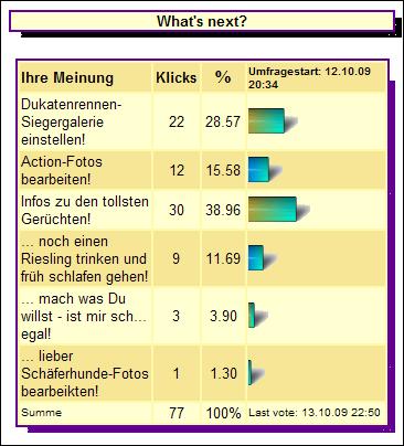 whatsnext-Umfrageergebnis-10-2009