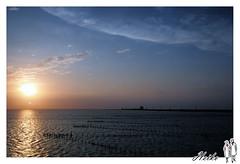 WAN_9789_1024 (Hankwan ) Tags: