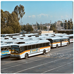 SCRTD - Display Photos RTD_1849_34 (Metro Transportation Library and Archive) Tags: publicity rtd scrtd southerncaliforniarapidtransitdistrict busexterior