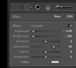 exposure brightness adjustment brush lightroom