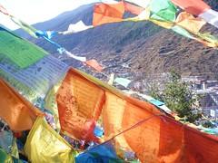 Dartsedo (Nick Gulotta) Tags: tibet kham dartsedo