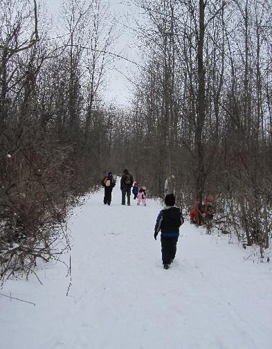 Winter Trail Walk