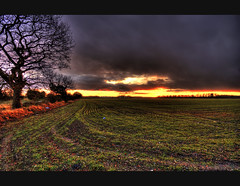 3:48pm (Bs0u10e0) Tags: uk winter sunset england tree field rain clouds countryside nikon december britain sigma wideangle 1020mm staffordshire 2009 hdr 348 sigma1020mm photomatix d80 orgreave nikond80 lichfielddistrict
