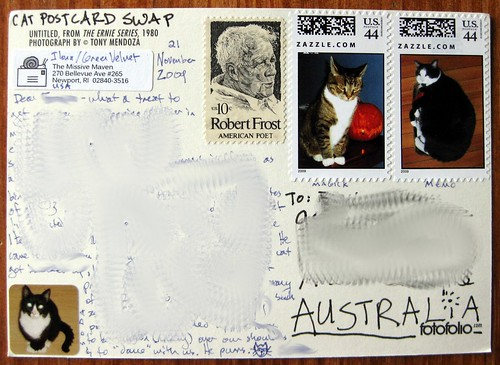 cat postcard swap