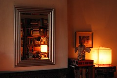 here is new york (omoo) Tags: newyorkcity glass reflections mirror book apartment interior westvillage books bookcases furnishings greenwichvillage paperlamps hereisnewyork elephantpuppet bevelededgemirror