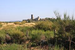 Au loin la Garde Guérin (Lozère, Cévennes)