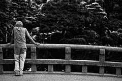 Coming To A Decision (Fabio Mandrioli  Photography) Tags: street bridge trees people blackandwhite bw lake man tree japan fence pond fabio nagoya  tsurumaipark   mandrioli fabiomandrioli