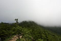 雲の中の登山道