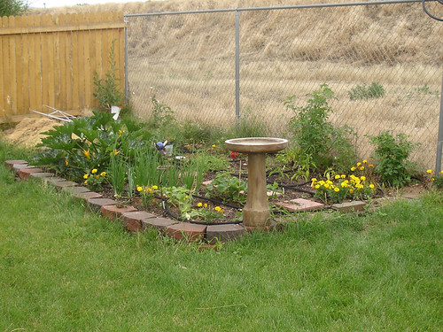 Wide View of Garden
