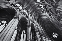 Reims (Guido Musch) Tags: blackandwhite france church nikon cathedral notredame explore frankrijk reims sigma1020 d40 guidomusch ormaybemoreinanycase4d finallyagainafterallthosephotoswithmyvivitar thewhitecouldhavebeenmorewhiteiseenow 4photostogofromthistrip